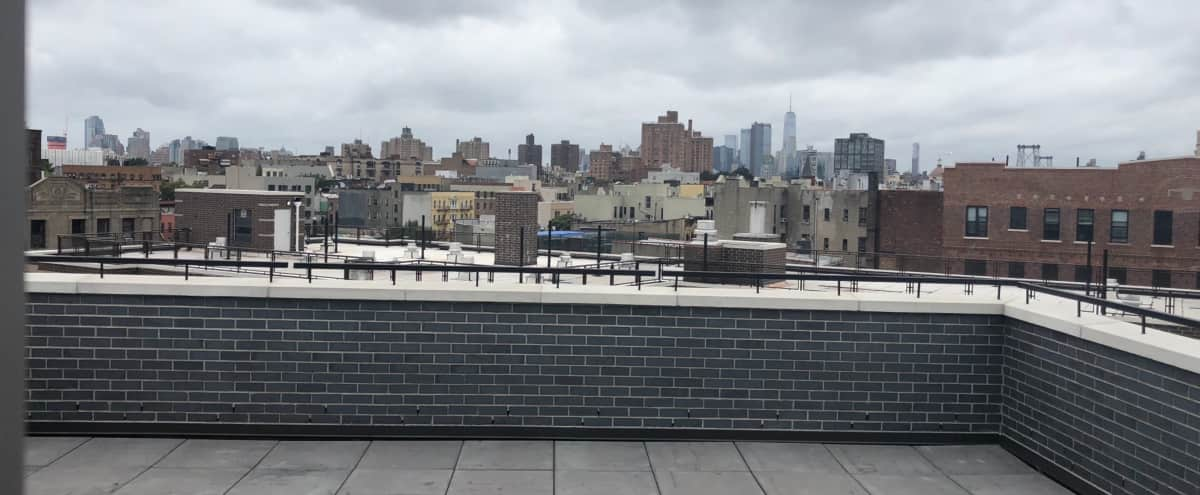 Brand New Williamsburg Penthouse with Two Rooftop Overlooking Manhattan Skyline in Brooklyn Hero Image in Williamsburg, Brooklyn, NY