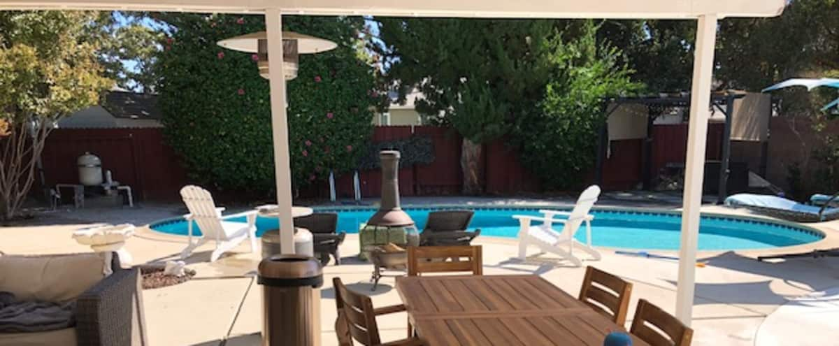 Private Outdoor Lounge with Pool in the San Fernando Valley in VAN NUYS Hero Image in Lake Balboa, VAN NUYS, CA
