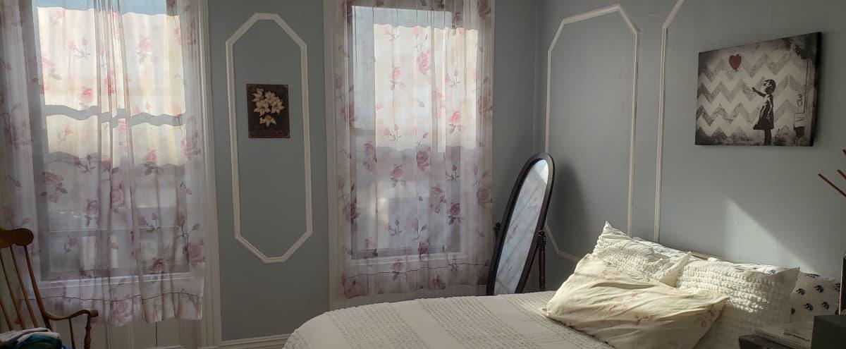 Large 1 Bedroom Apartment with Natural Light in Hoboken Hero Image in Biggie's Way, Hoboken, NJ