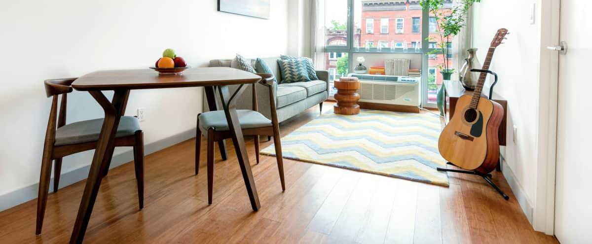 Modern One Bedroom Staged Apartment in BROOKLYN Hero Image in Brooklyn, BROOKLYN, NY