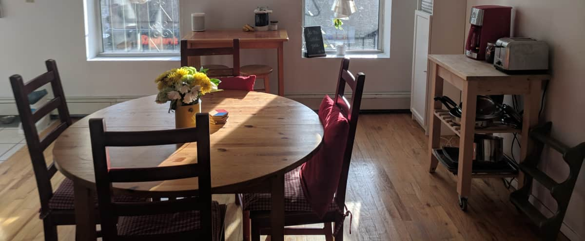 Large, Sun-Filled Living and Working Space in Park Slope in Brooklyn Hero Image in Park Slope, Brooklyn, NY