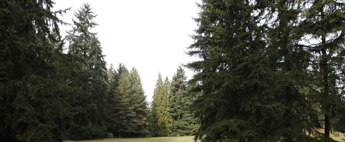 Green, Natural, Rolling Pasture Space in Bellevue Hero Image in Bridle Trails, Bellevue, WA