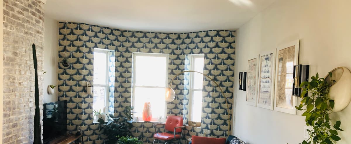 Trendy Apartment With Hipster Vibe in Union City Hero Image in undefined, Union City, NJ