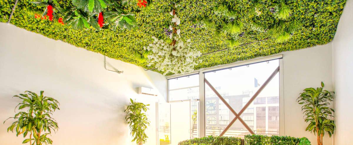 The Secret Garden Loft - Huge Balcony in Hollyowod Hero Image in Central LA, Hollyowod, CA