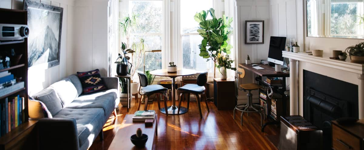 Beautiful and Bright Edwardian Flat with Mid Century details.