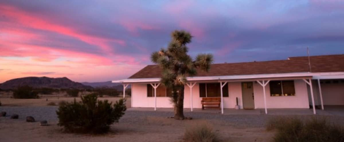 Beautiful Ranch Style House in the High Desert in Yucca Valley Hero Image in undefined, Yucca Valley, CA