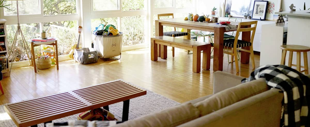 Light-Filled Mid-Century Modern Home in Berkeley Hero Image in Berkeley Hills, Berkeley, CA