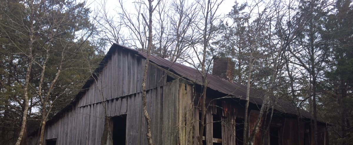 Cabin in the woods in Murfreesboro Hero Image in undefined, Murfreesboro, TN