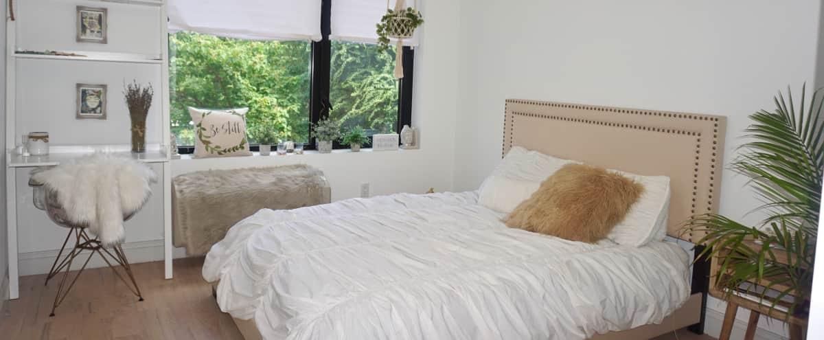 Modern Bohemian Bedroom in Brooklyn Hero Image in Bedford-Stuyvesant, Brooklyn, NY