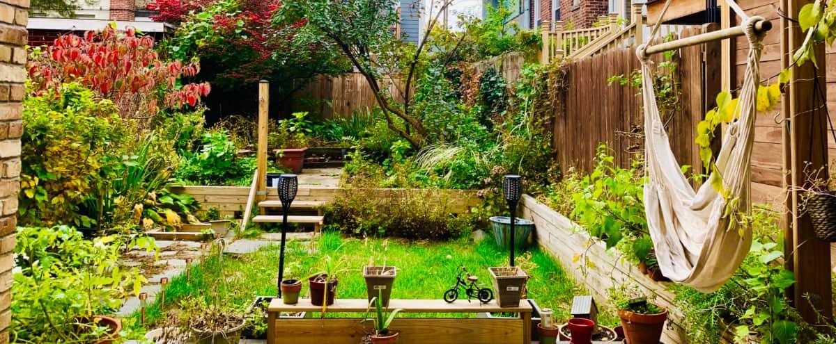 Midmordern century duplex with outdoor oasis in Hoboken Hero Image in Wesley J. Howe Center, Hoboken, NJ