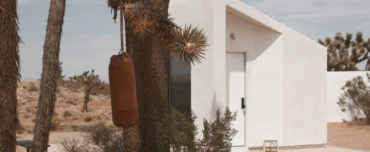Luxury Retreat Space in Joshua Tree- Spa and Salt Water Pool on a Vista in Yucca valley Hero Image in undefined, Yucca valley, CA