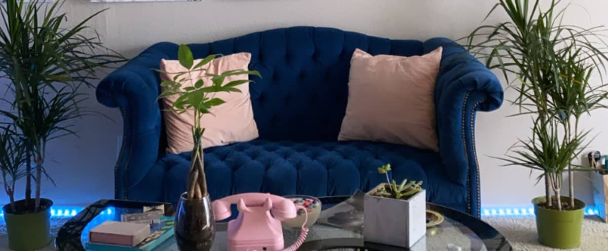 Urban Apartment with Chic Aesthetic in Los Angeles Hero Image in Rampart Village, Los Angeles, CA