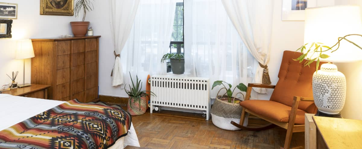 Stunning Parlor Garden Apartment in Brooklyn Hero Image in Clinton Hill, Brooklyn, NY