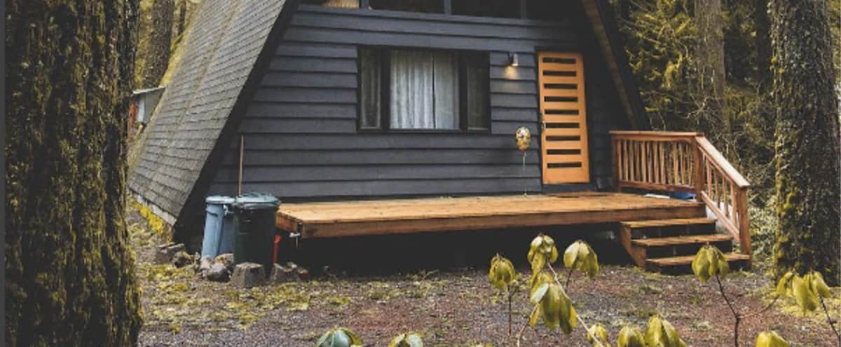Well designed modern A-frame Cabin on Mt. Hood in Rhododendron Hero Image in undefined, Rhododendron, OR