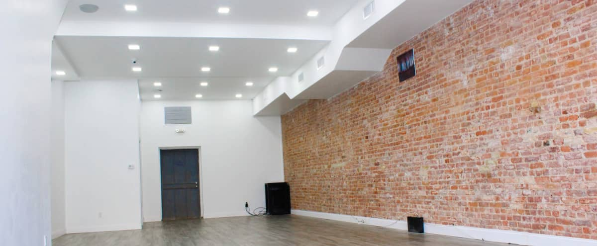 Crown Heights Brooklyn Spacious Event Space in Brooklyn Hero Image in Prospect Lefferts Gardens, Brooklyn, NV