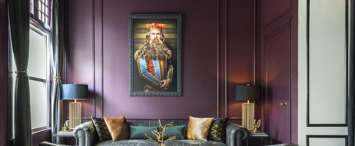 Unique Luxury Private Castro Social Club in San Francisco Hero Image in Duboce Triangle, San Francisco, CA