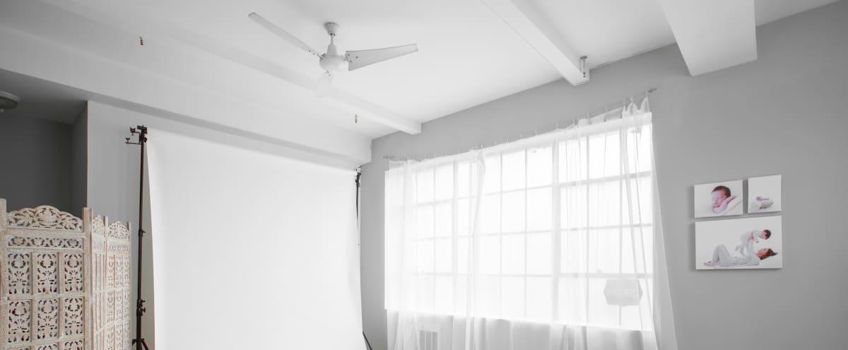 Sunny, Cozy studio in Long Island City Hero Image in Long Island City, Long Island City, NY