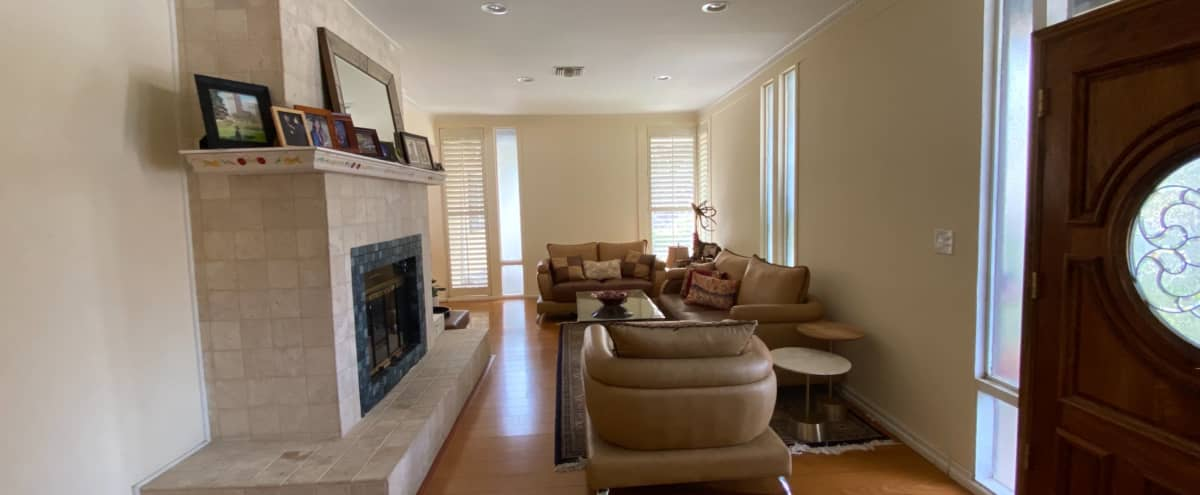 Mid-Century House with Natural Light in Sunland Hero Image in Sunland-Tujunga, Sunland, CA