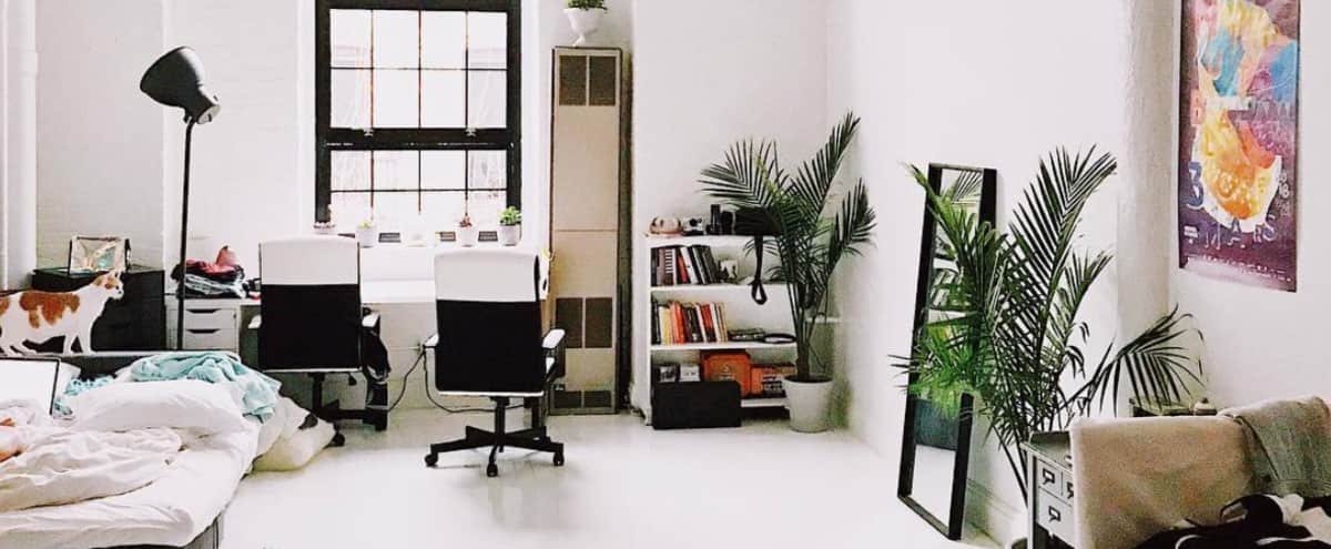 Bright and Spacious Artist Loft with White Floors! in New York Hero Image in Bushwick, New York, NY