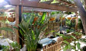 Enchanting Rainforest Event Space In The City in Central LA, Los Feliz, CA | Peerspace