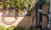 Sweet Marina House - Bike To Beach - Organic Fruit Trees in Lush Backyard in undefined, CULVER CITY, CA | Peerspace
